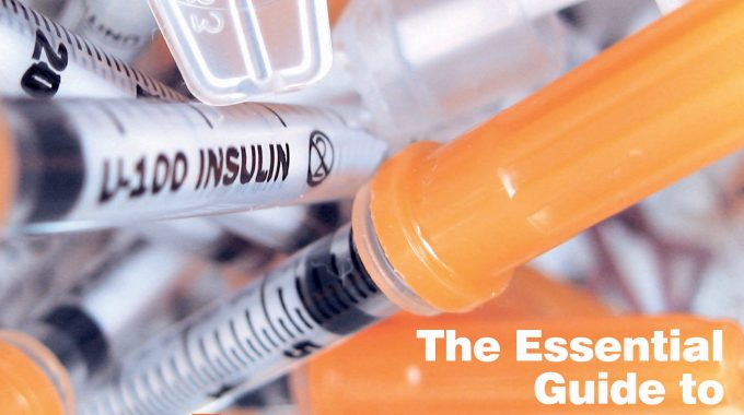11 The Essential Guide To Diabetes