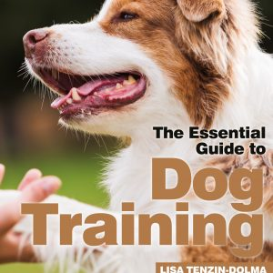 The Essential Guide To Dog Training