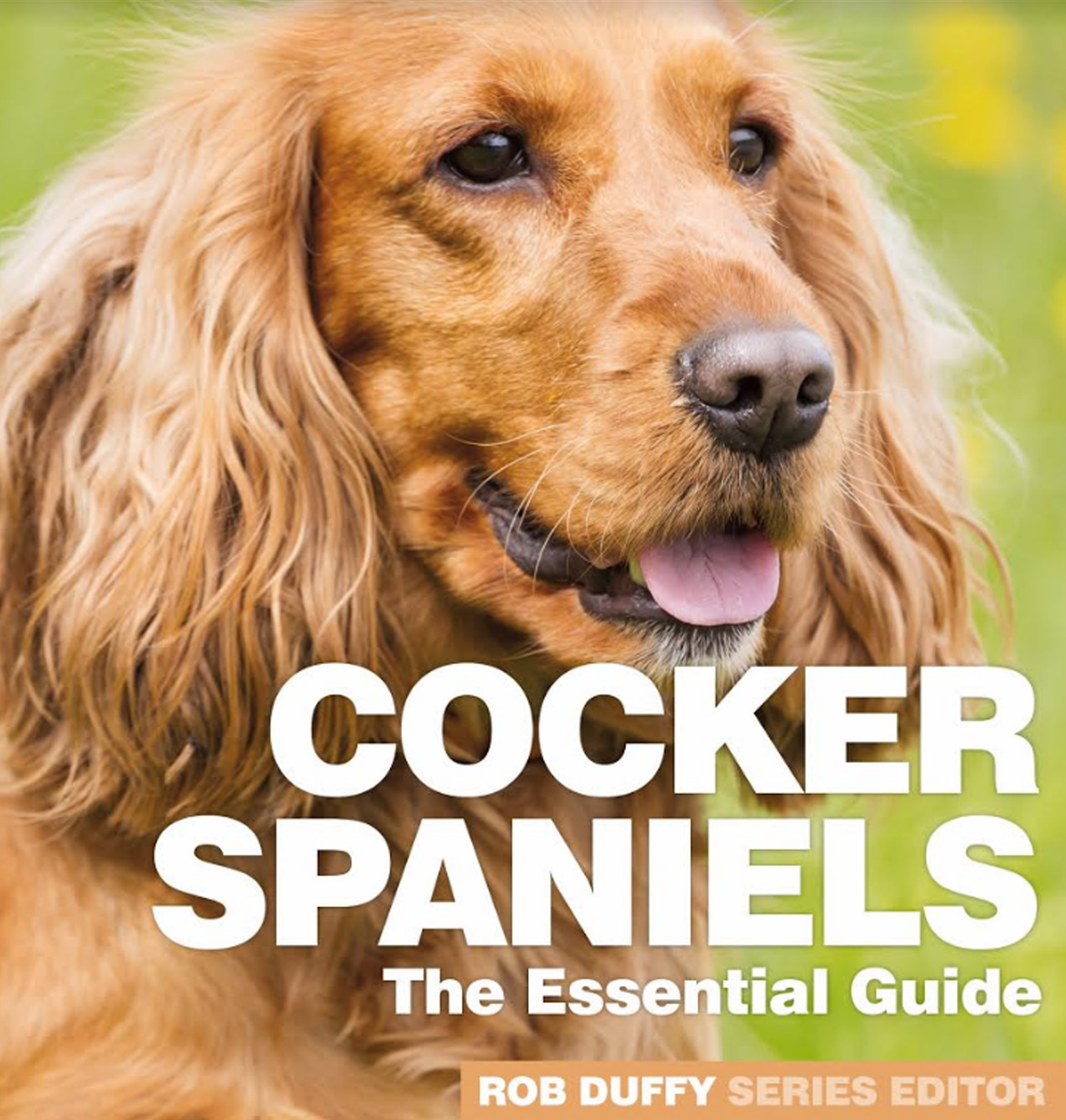 Cocker Spaniels The Essential Guide