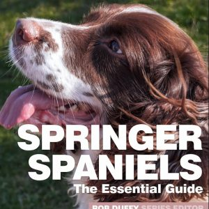 Springer Spaniels The Essential Guide