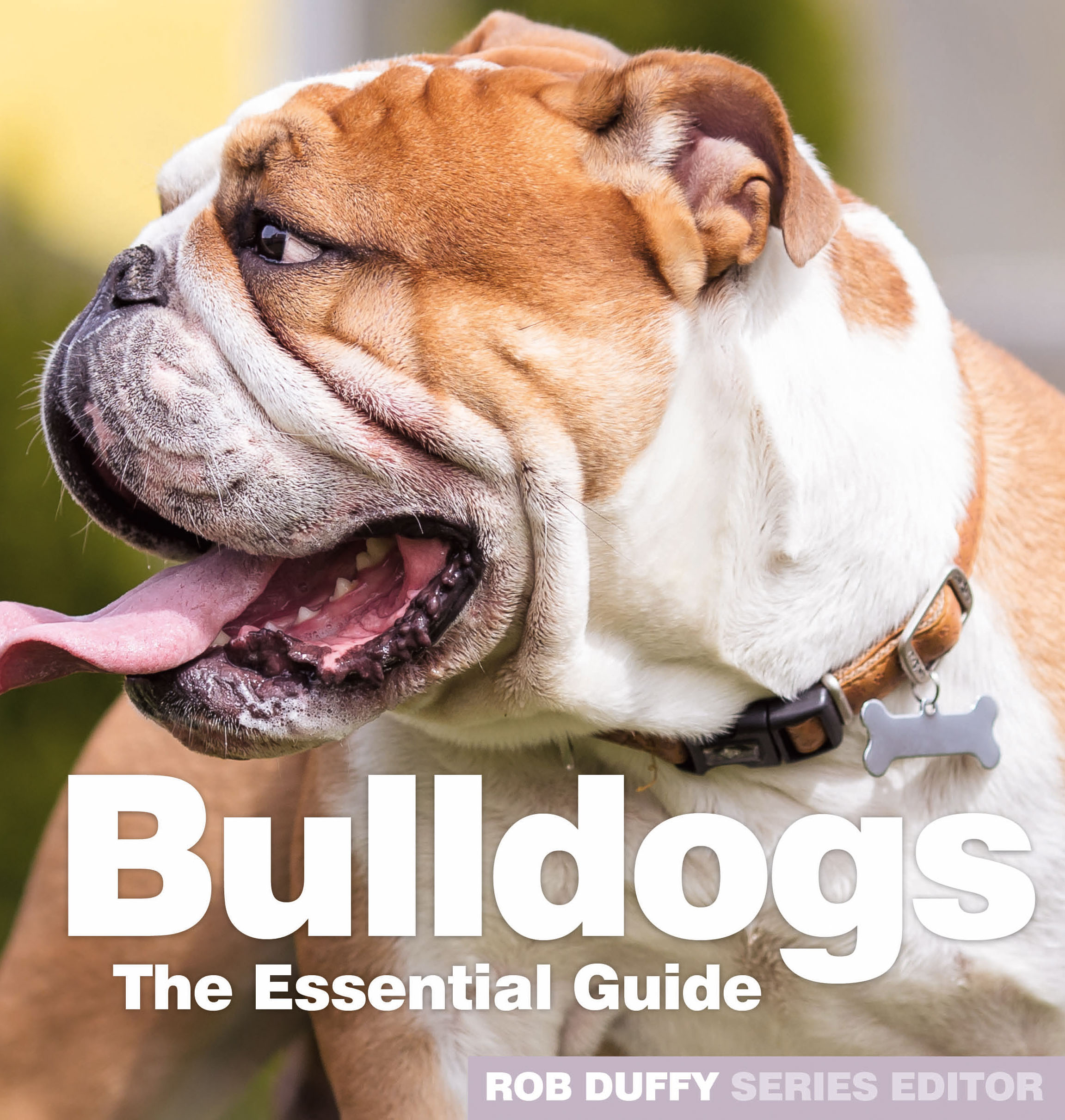 Bulldogs The Essential Guide