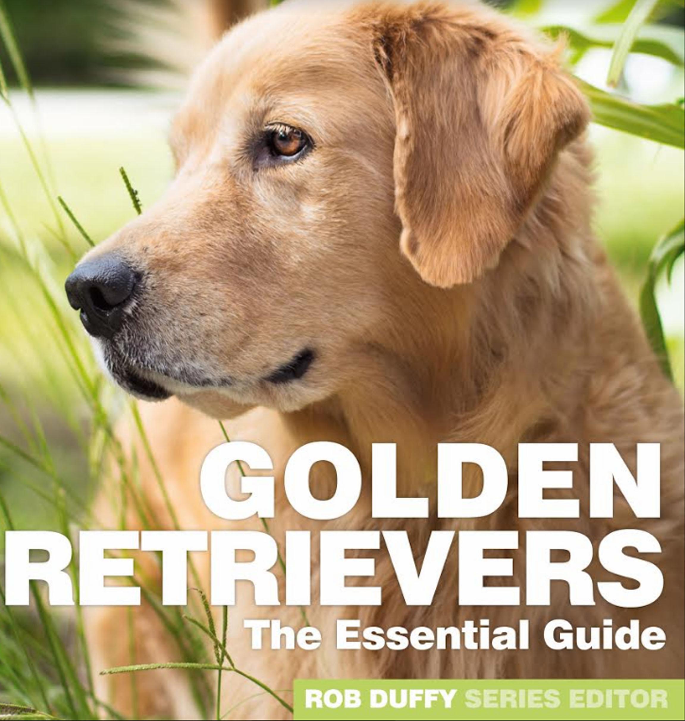 Golden Retrievers The Essential Guide