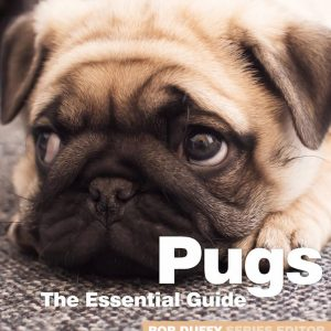 Pugs The Essential Guide