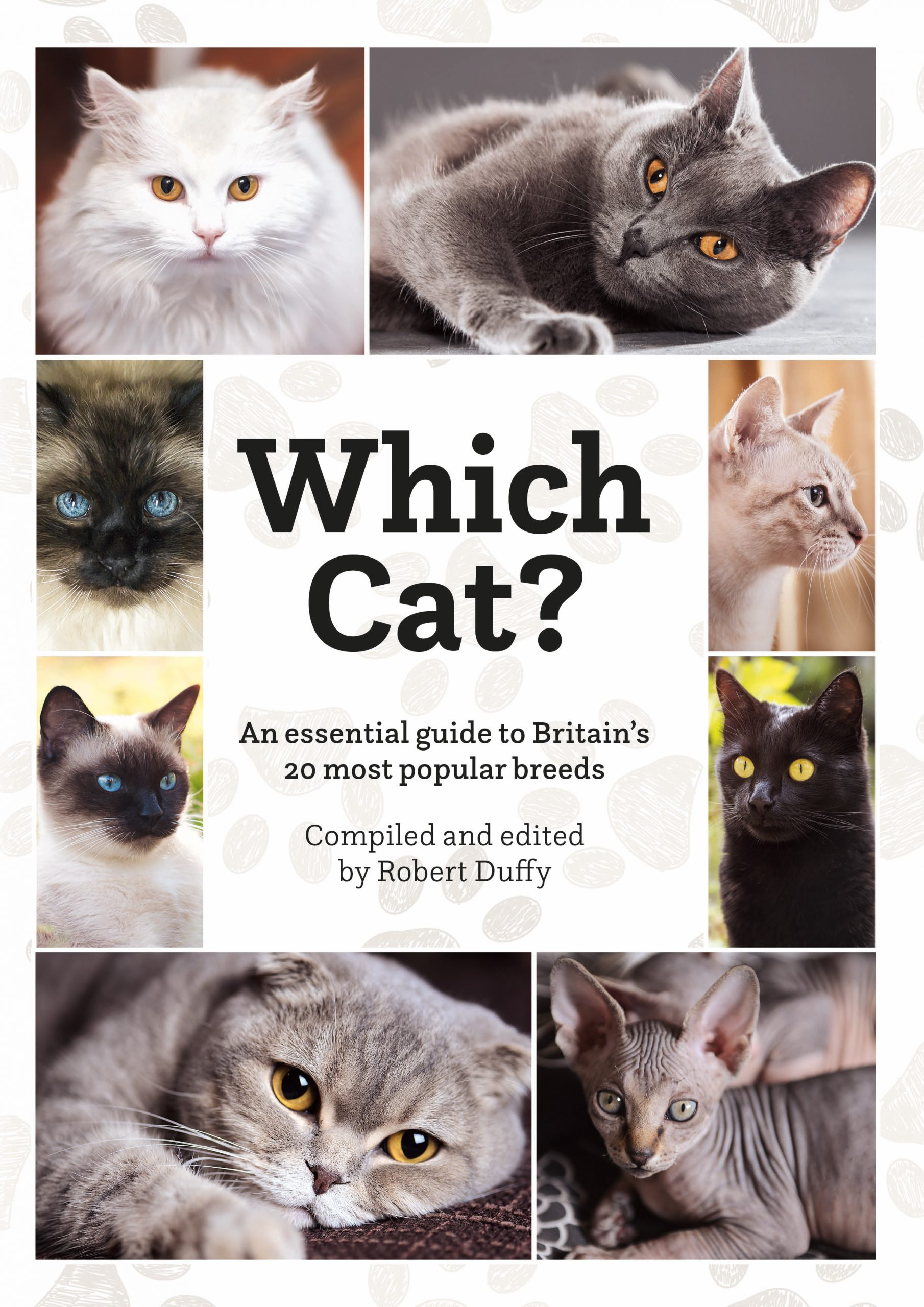 Which Cat? An Essential Guide To Britain's 20 Most Popular Breeds
