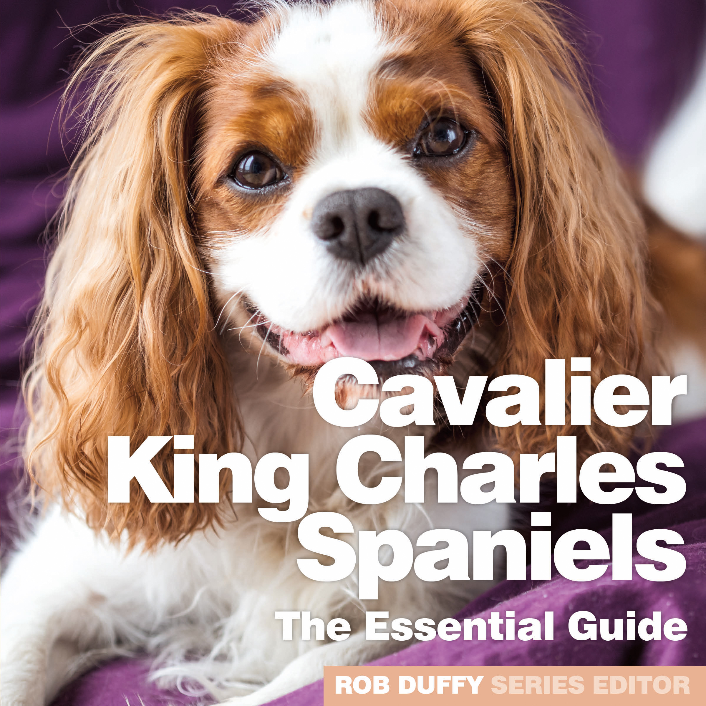 Cavalier King Charles Spaniels The Essential Guide