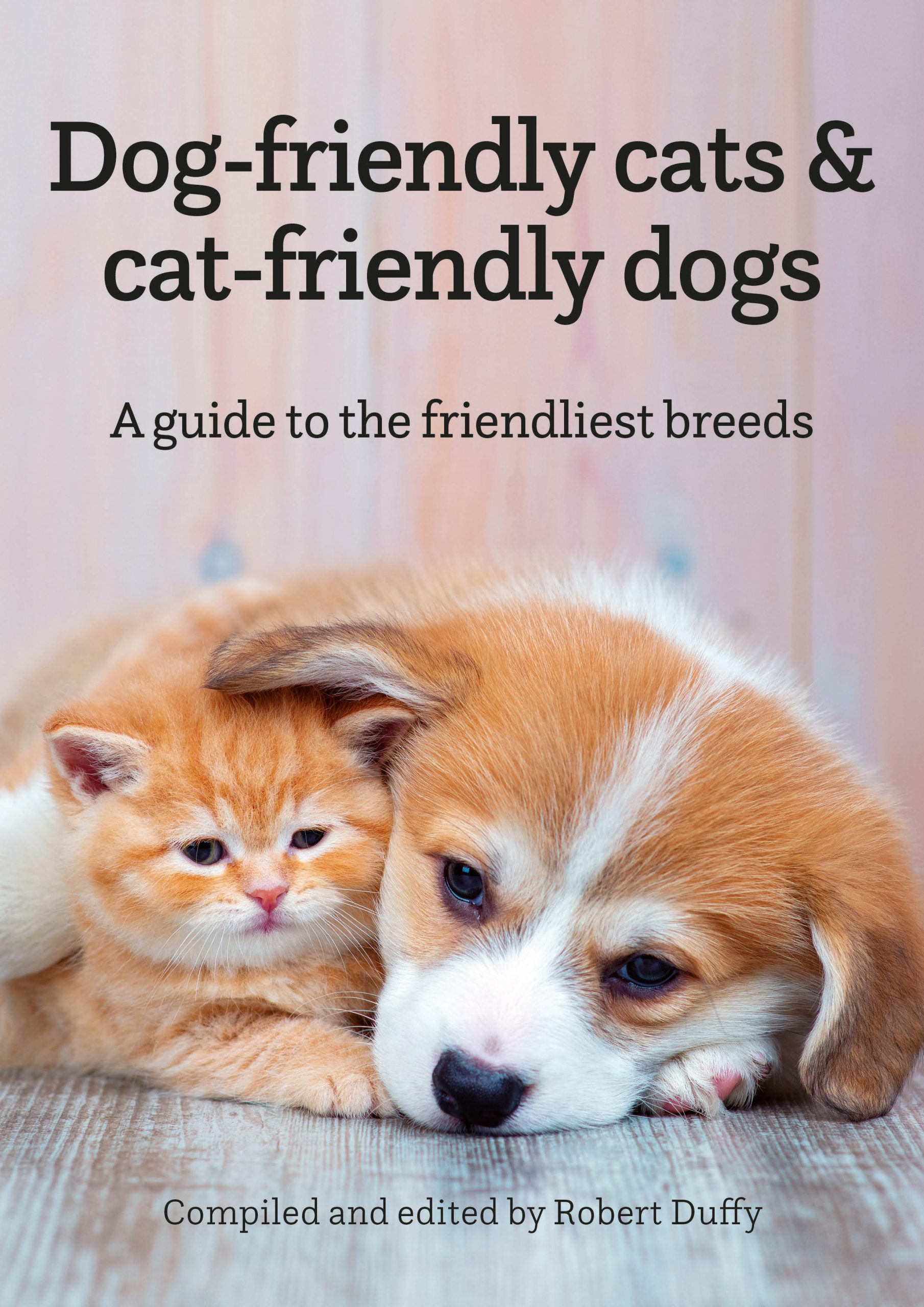 Dog-friendly Cats & Cat-friendly Dogs: A Guide To The Friendliest Breeds